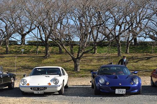 Lotsu Cars