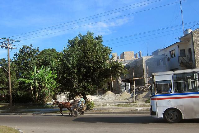 horse & buggy vs. autobus