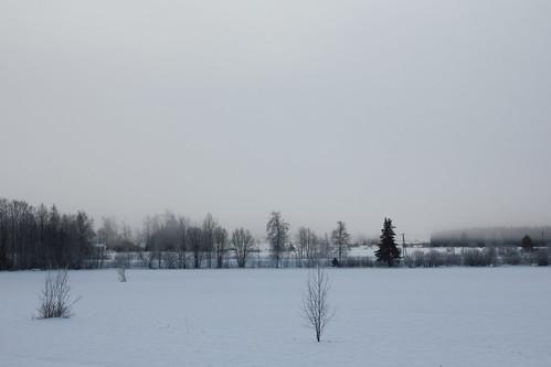 Winter Wonderland: Finland