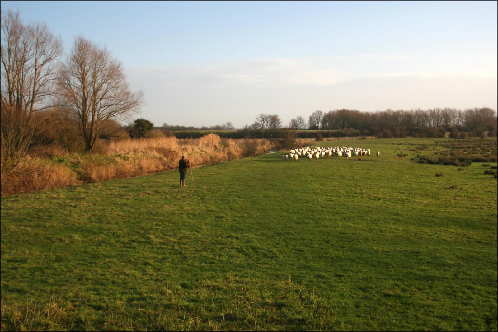 Farmer in Glynde, East Sussex