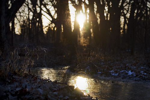 winter ice sunrise nebraska stream january lincoln wildernesspark jennifernish