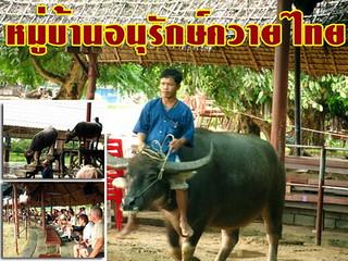 Saraburi guide_025
