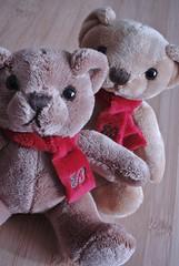 koala(0.0), teddy bear(1.0), textile(1.0), brown(1.0), mammal(1.0), plush(1.0), stuffed toy(1.0), pink(1.0), toy(1.0),