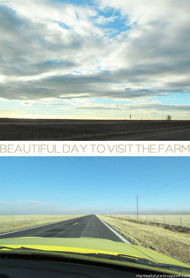 Farm Drive