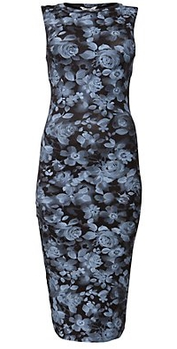 Blue Rose Print Bodycon Midi Dress