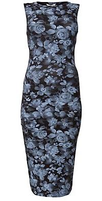 Blue Rose Print Bodycon Midi Dress