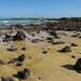 Galapagos_10661