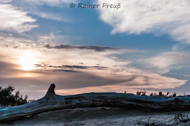sunset dune