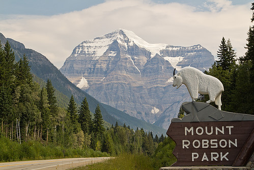 travel schnee mountain snow canada ice berg britishcolumbia rockymountains mountrobson eis mountaingoat reise kanada mountrobsonpark schneeziege