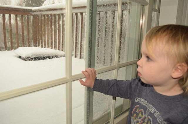 Snow Day (2)