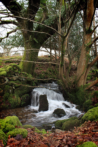 Stream by Helen in Wales