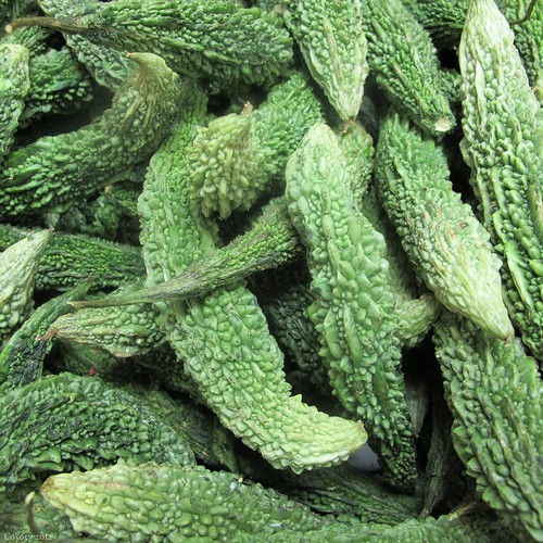 Karela (Indian bitter melon) by Coyoty