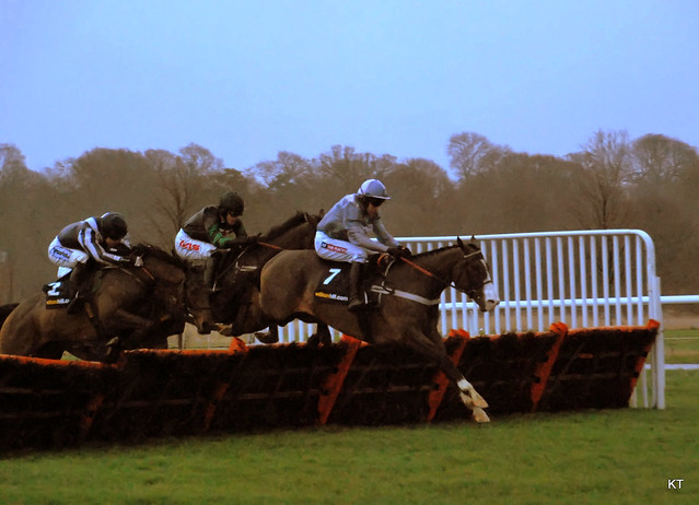 Former Champion Hurdler Punjabi leads in the Christmas Hurdle