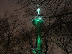 Winter_2012_12_Rotterdam_30