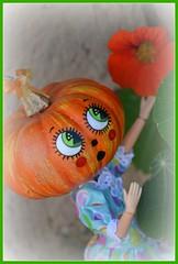 Citrouillette - Pumpkin Girl