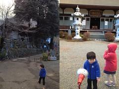 お寺へ散歩 2012/12/31