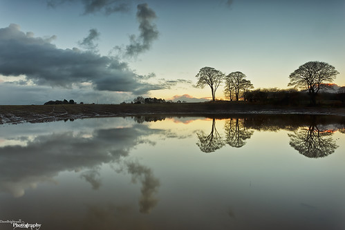 Flooded by Dave Brightwell