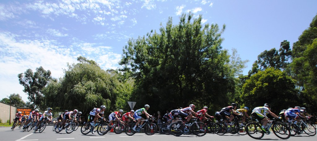 Riders in the Herald Sun Tour