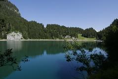 Lac de Tanay, Valais