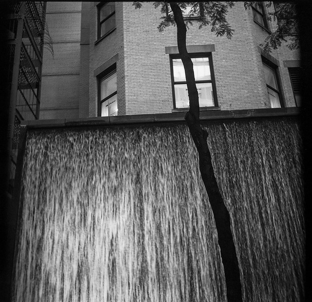cascading water wall, backlit tree, city park, near MOMA, New York, Zeiss Ikonta M, Rollei RPX 400, Ilford Ilfosol 3 Developer, mid September 2016