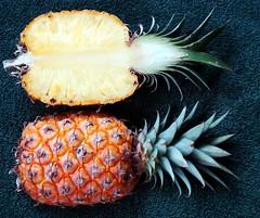 Pineapple  #20