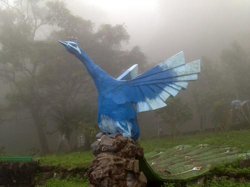 南投鹿谷.國立鳳凰谷鳥園