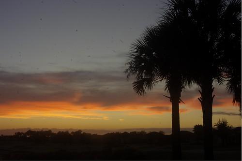 sunrise golf course tarpon boil