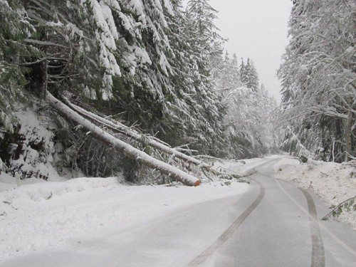 Six feet of snow on Mount Baker Highway since Friday