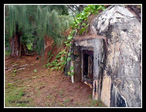 Japanese Air Raid Bunker (1)