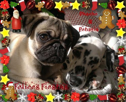 """Feliz Navidad !! by """" Kuroinatsu"""""""