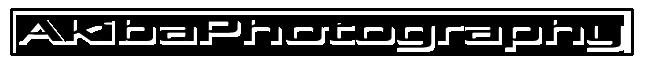 ap_logo_bk