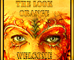 welcome orange look colection