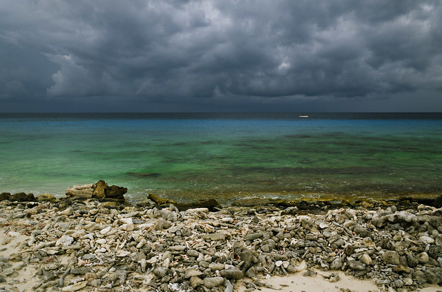 Header of Bonaire
