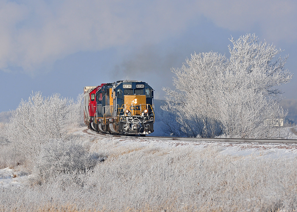 A frosty train heads into Waseca, MN