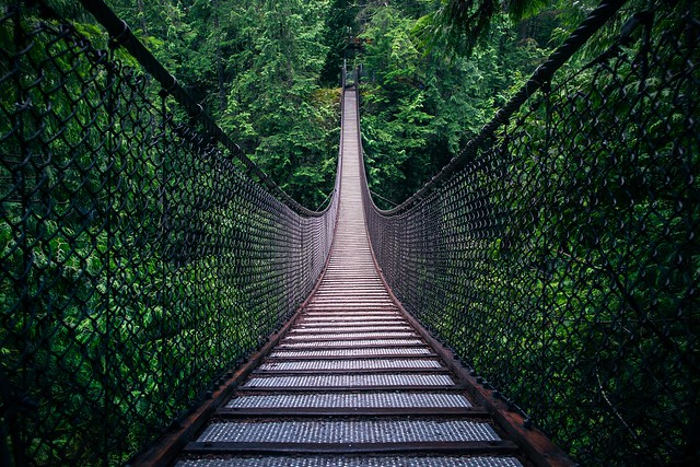 Lynn Canyon Bridge