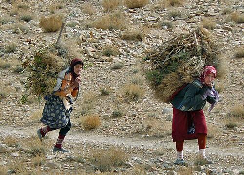 Niñas llevando maderas (Medio Atlas, Marruecos)