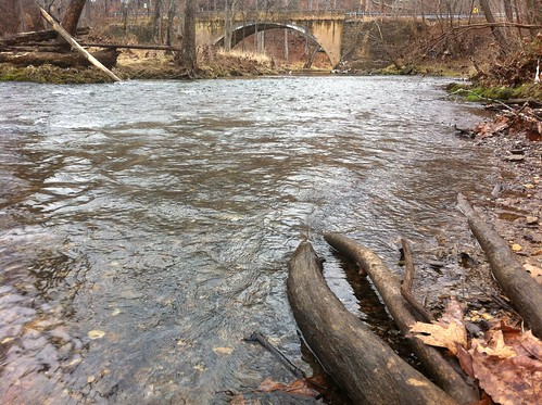 Gunpowder River Upstream of York Rd