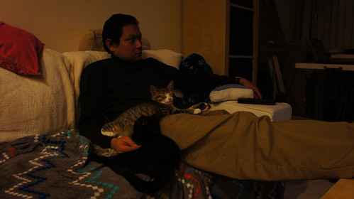 On Couch with Kittens