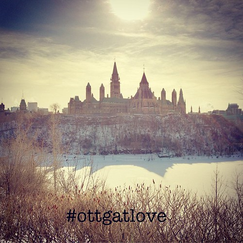 Only my profound love for Ottawa would get me out snapping pix for #ottgatlove in -18C!