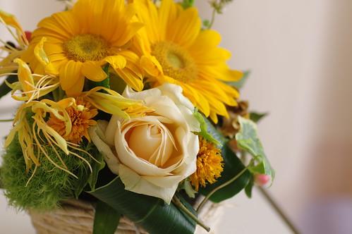 お見舞いで頂いたお花♪
