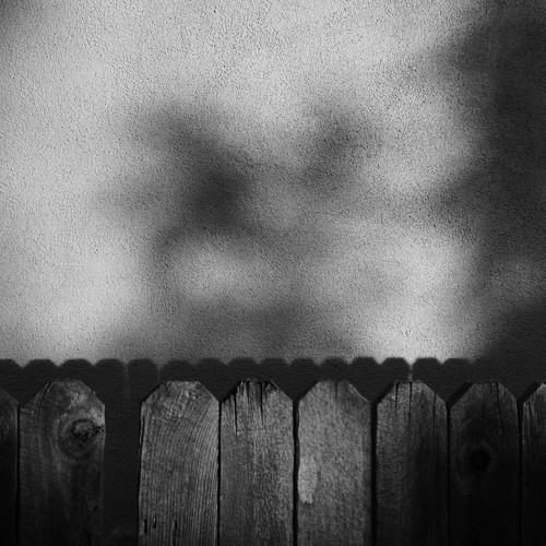 fence and shadows.