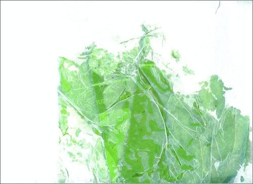 12 -12-2012547-003 by fernanda garrido