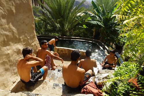 green water pool swimming aqua desert oasis oman