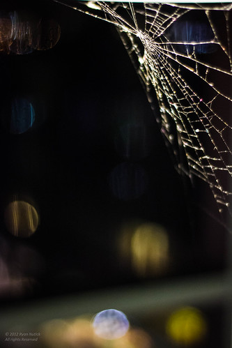 Webs of the City 3