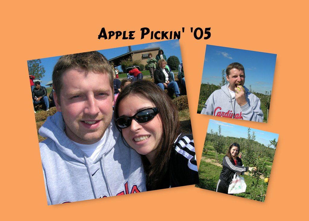 applepickincollage