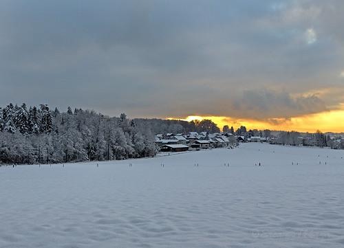 sunset snow landscape schweiz switzerland sonnenuntergang bern ocaso coucherdesoleil solnedgang landschaften langenthal kantonbern