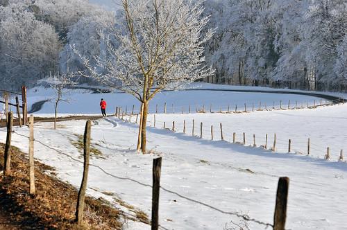 "winter snow nature forest landscape switzerland frost country jura delémont flickrsportal ""greatshotss"