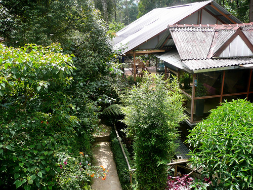 King Fern Cottage, Nuwara Eliya
