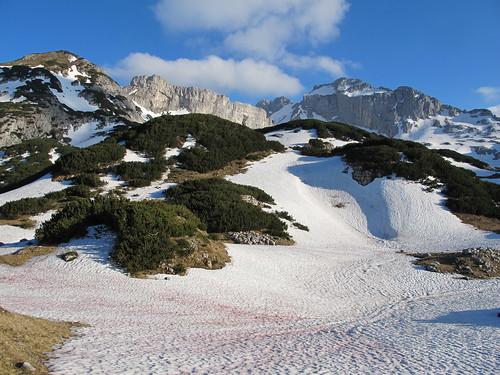 snow mountains peak bluesky limestone slope montenegro crnagora durmitor formeryugoslavia црнагора pinescrub