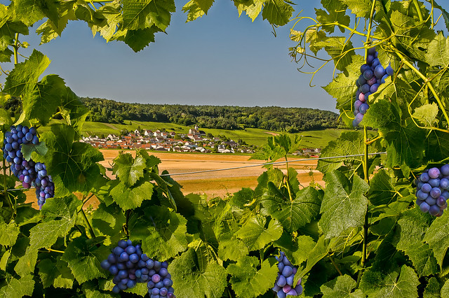 village-de-Cuis
